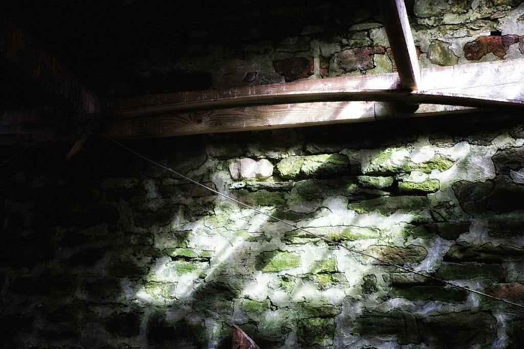 Light in the Byre