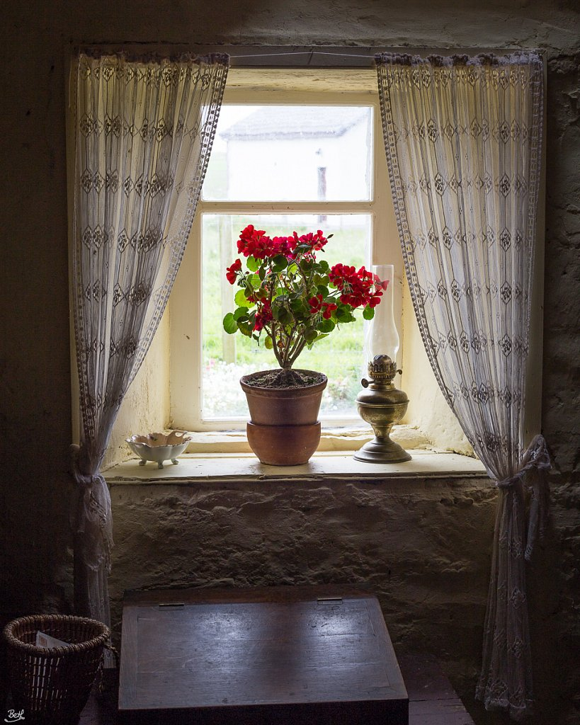 Sitting Room Window